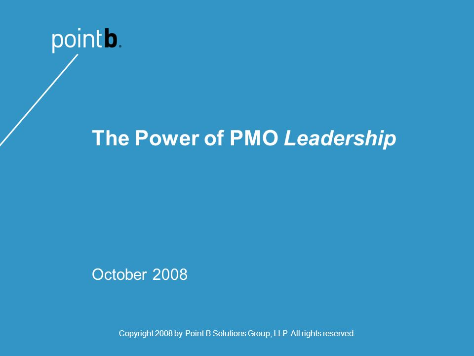 The Power of PMO Leadership October 2008 Copyright 2008 by Point B Solutions Group, LLP.