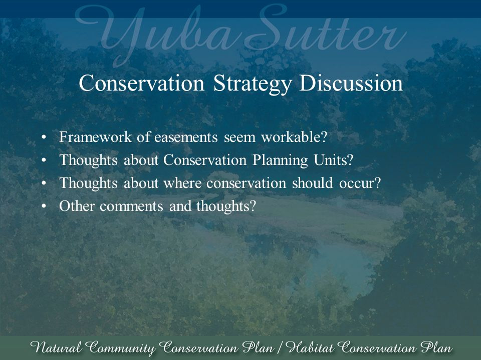 Conservation Strategy Discussion Framework of easements seem workable.