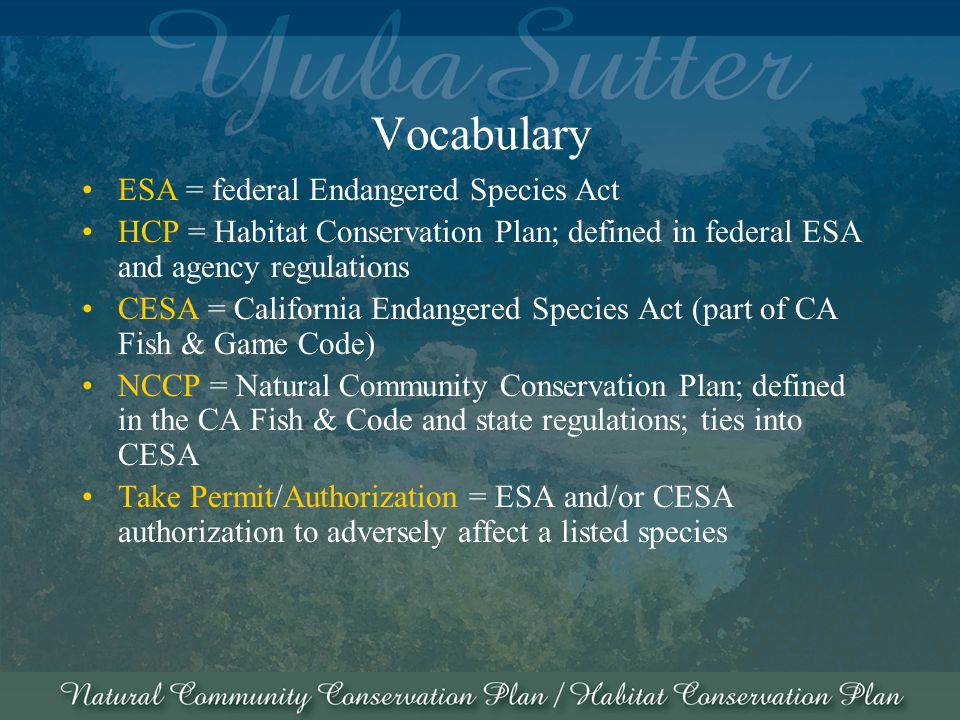 Vocabulary ESA = federal Endangered Species Act HCP = Habitat Conservation Plan; defined in federal ESA and agency regulations CESA = California Endangered Species Act (part of CA Fish & Game Code) NCCP = Natural Community Conservation Plan; defined in the CA Fish & Code and state regulations; ties into CESA Take Permit/Authorization = ESA and/or CESA authorization to adversely affect a listed species