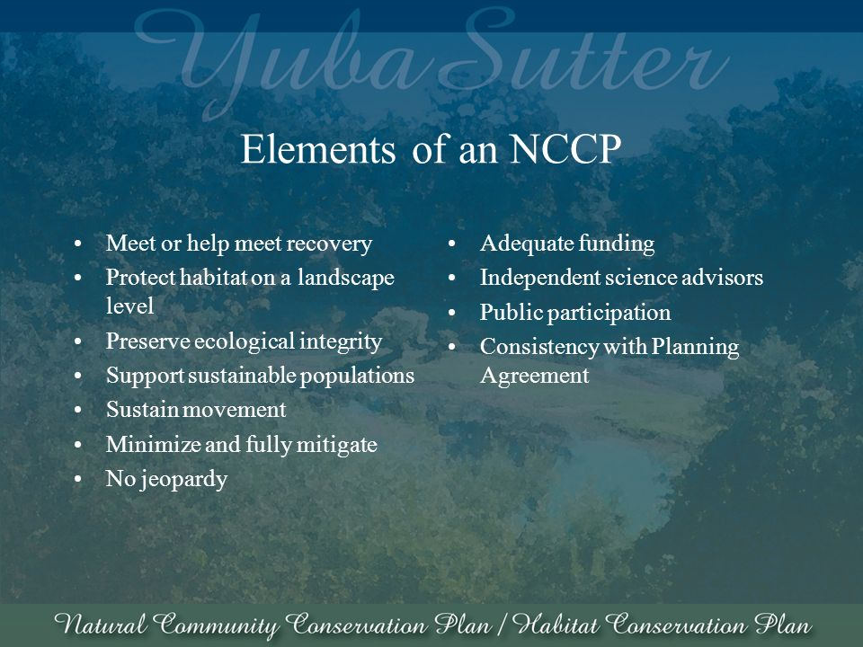 Elements of an NCCP Meet or help meet recovery Protect habitat on a landscape level Preserve ecological integrity Support sustainable populations Sustain movement Minimize and fully mitigate No jeopardy Adequate funding Independent science advisors Public participation Consistency with Planning Agreement