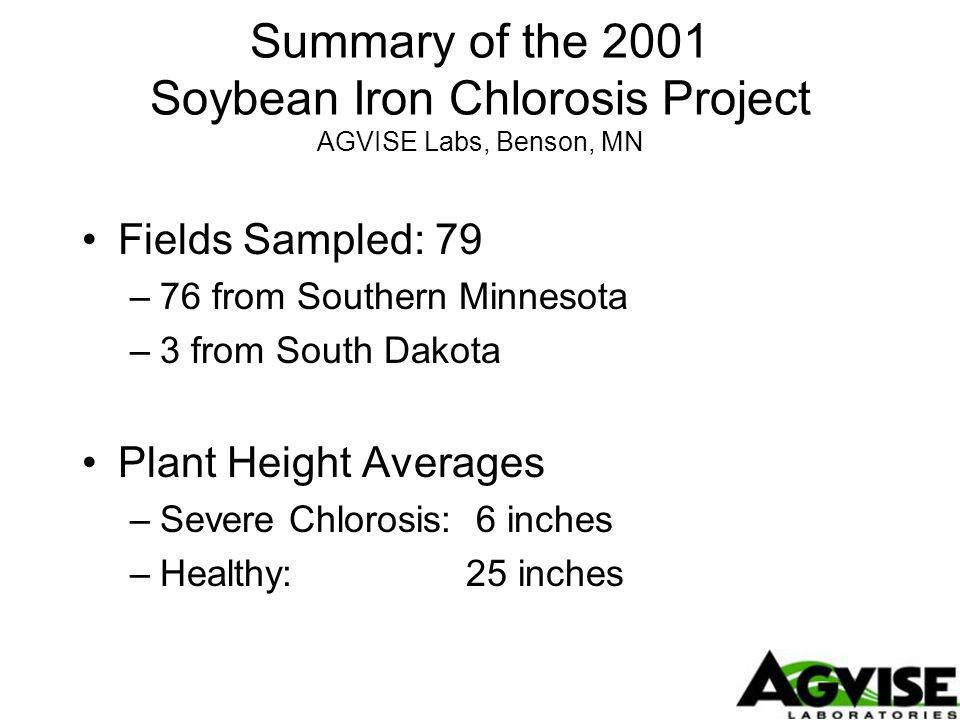 Summary of the 2001 Soybean Iron Chlorosis Project AGVISE Labs, Benson, MN Fields Sampled: 79 –76 from Southern Minnesota –3 from South Dakota Plant Height Averages –Severe Chlorosis: 6 inches –Healthy:25 inches
