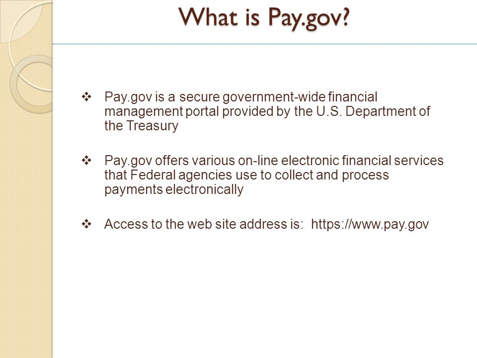 What is Pay.gov.