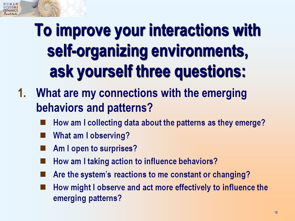 To improve your interactions with self-organizing environments, ask yourself three questions: 18 1.What are my connections with the emerging behaviors and patterns.
