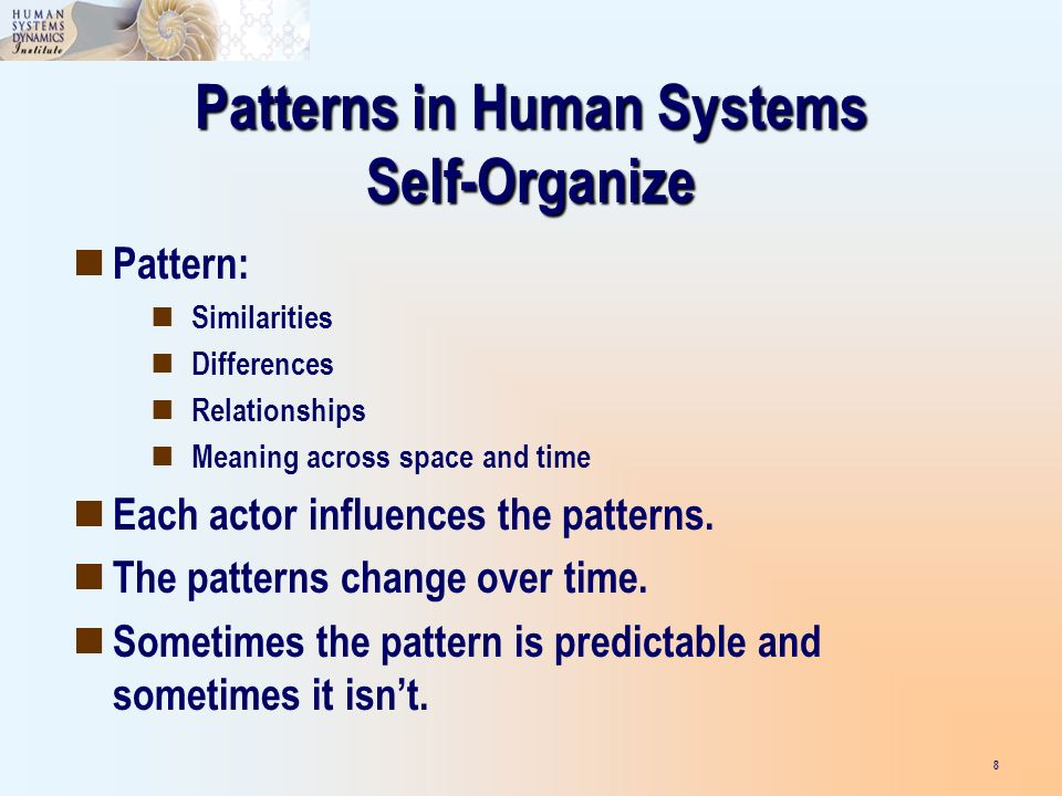 Patterns in Human Systems Self-Organize Pattern: Similarities Differences Relationships Meaning across space and time Each actor influences the patterns.
