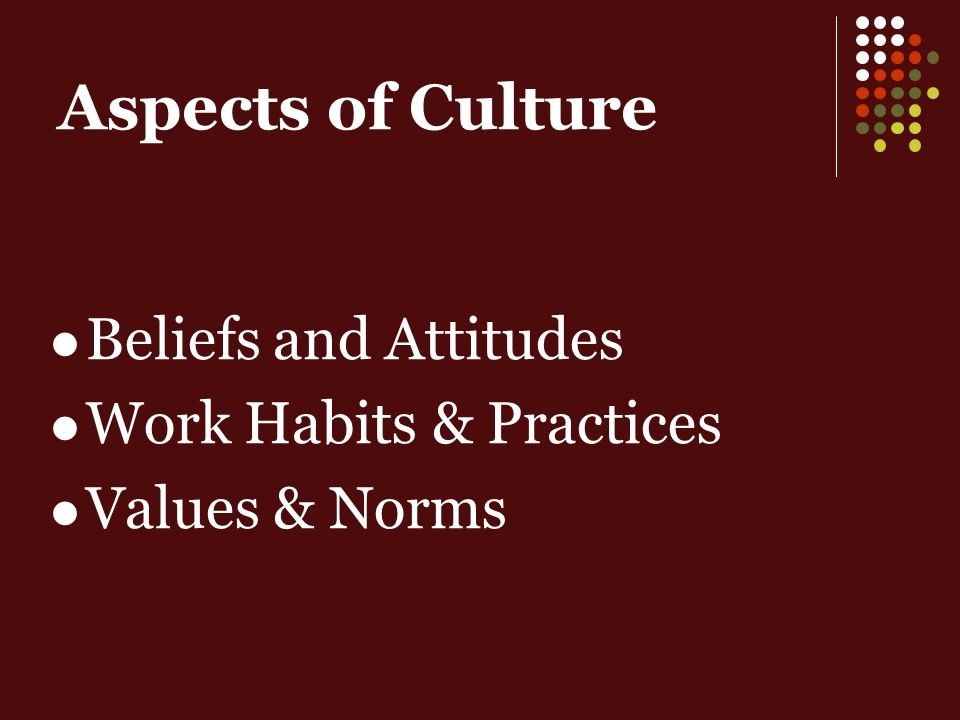 Aspects of Culture Beliefs and Attitudes Work Habits & Practices Values & Norms
