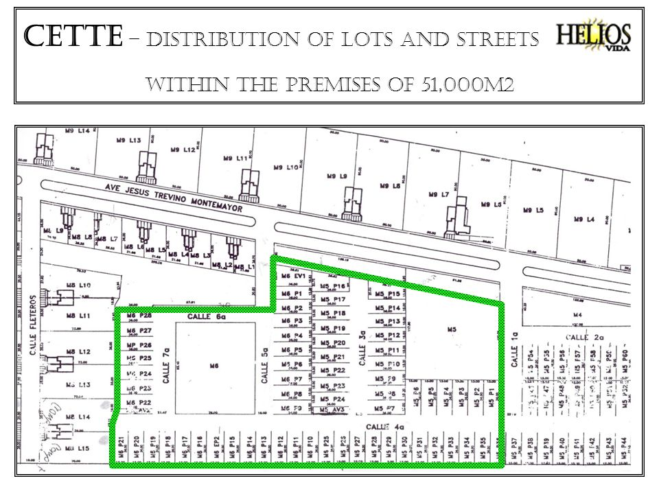 CETTe – distribution of lots and streets within the premises of 51,000M2