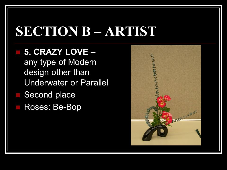 SECTION B – ARTIST 5.