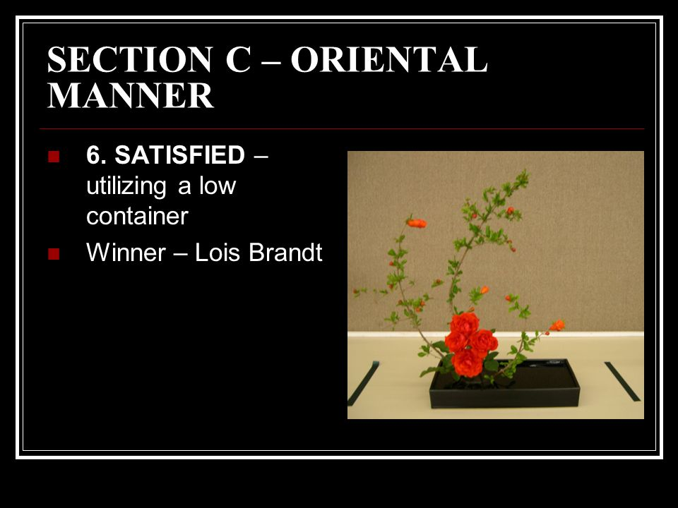 SECTION C – ORIENTAL MANNER 6. SATISFIED – utilizing a low container Winner – Lois Brandt