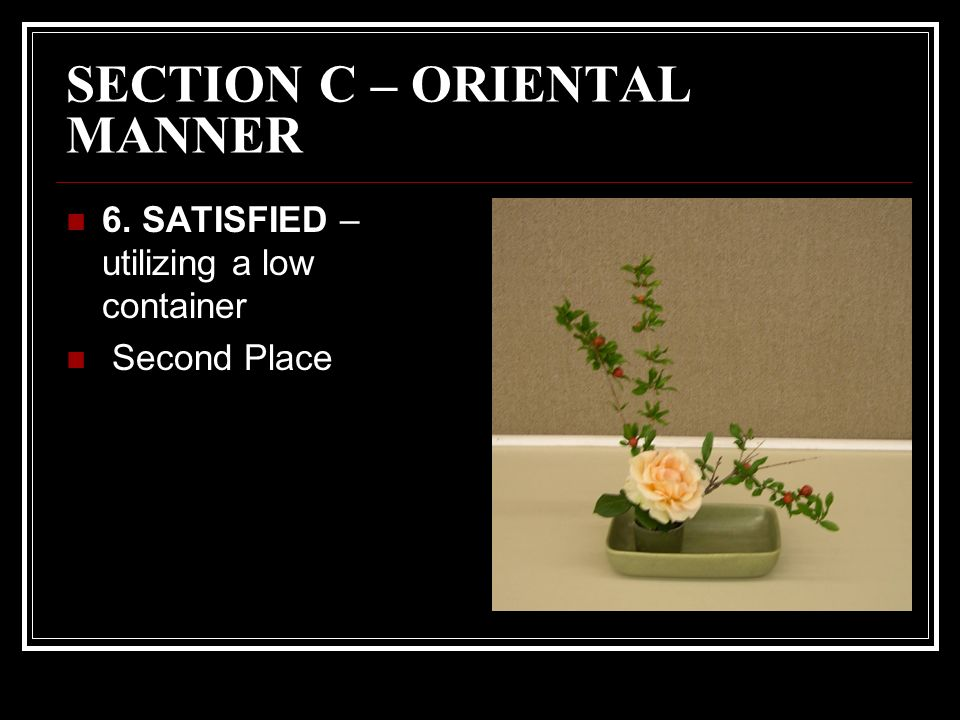 SECTION C – ORIENTAL MANNER 6. SATISFIED – utilizing a low container Second Place