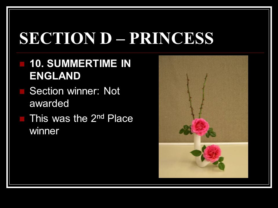 SECTION D – PRINCESS 10.