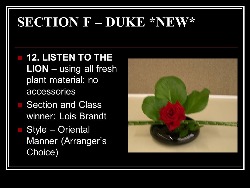 SECTION F – DUKE *NEW* 12.