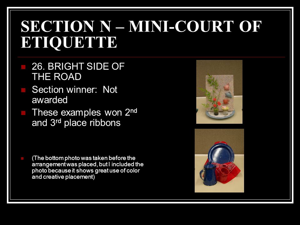 SECTION N – MINI-COURT OF ETIQUETTE 26.