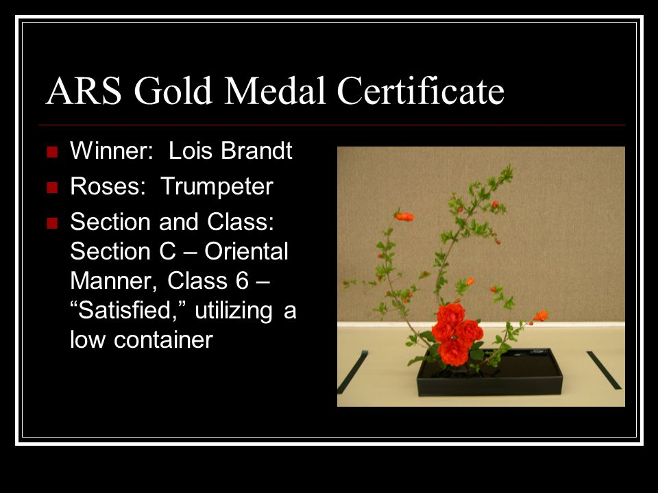 ARS Gold Medal Certificate Winner: Lois Brandt Roses: Trumpeter Section and Class: Section C – Oriental Manner, Class 6 – Satisfied, utilizing a low container
