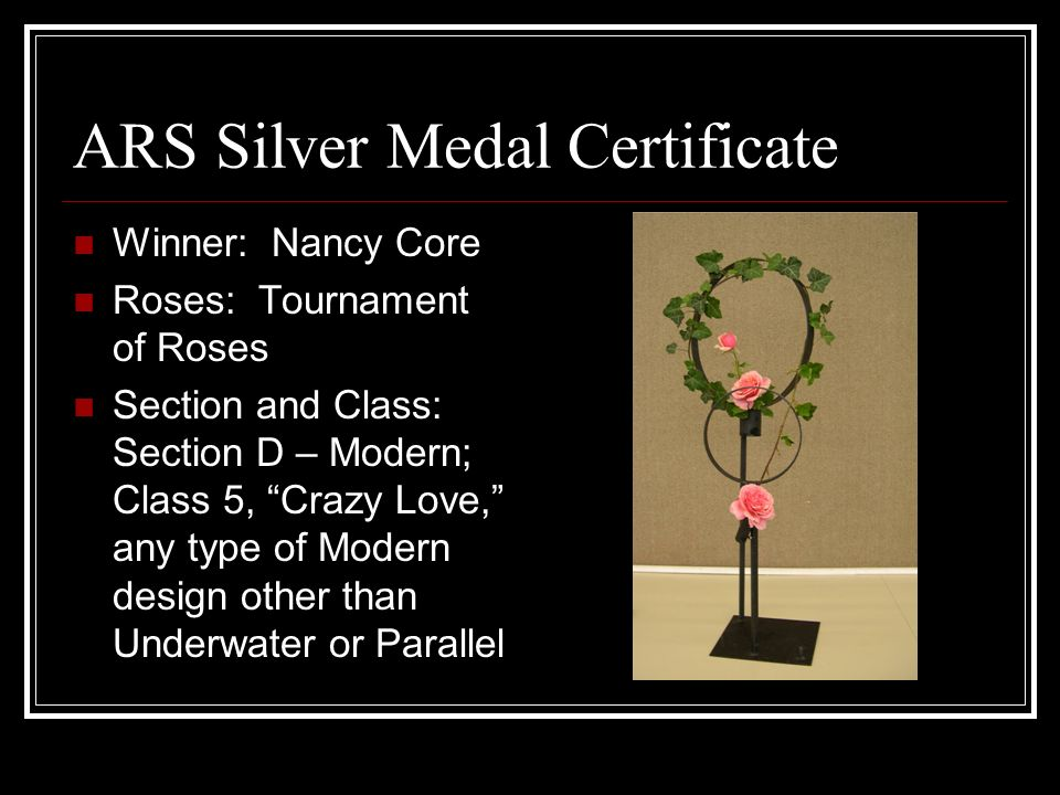 ARS Silver Medal Certificate Winner: Nancy Core Roses: Tournament of Roses Section and Class: Section D – Modern; Class 5, Crazy Love, any type of Modern design other than Underwater or Parallel