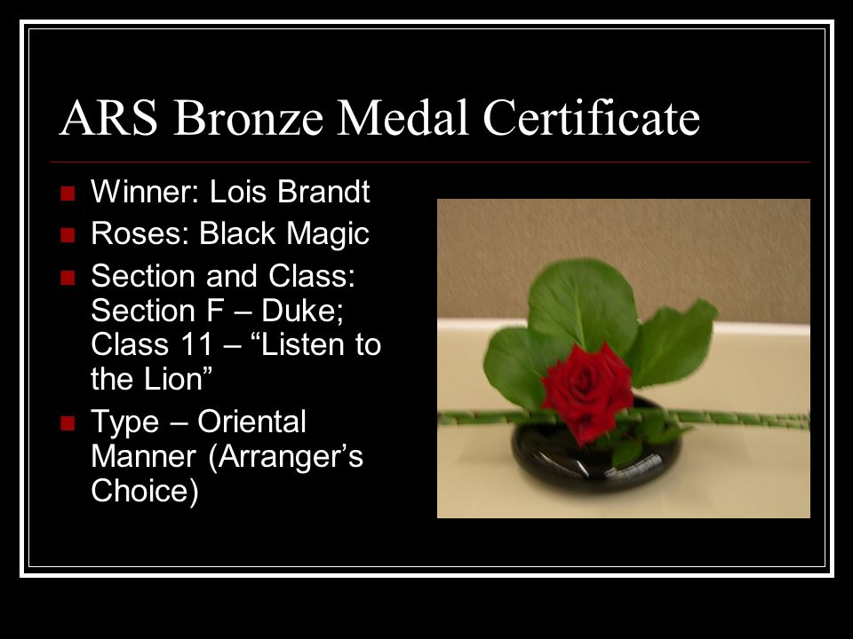 ARS Bronze Medal Certificate Winner: Lois Brandt Roses: Black Magic Section and Class: Section F – Duke; Class 11 – Listen to the Lion Type – Oriental Manner (Arrangers Choice)