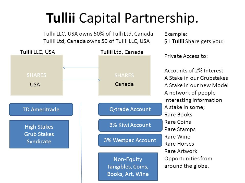SHARES Tullii Capital Partnership.