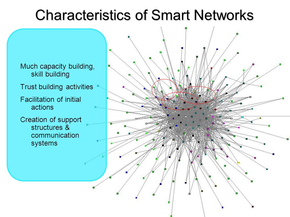 Characteristics of Smart Networks Much capacity building, skill building Trust building activities Facilitation of initial actions Creation of support structures & communication systems