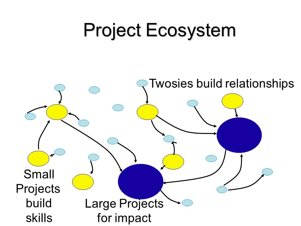 Project Ecosystem Twosies build relationships Small Projects build skills Large Projects for impact