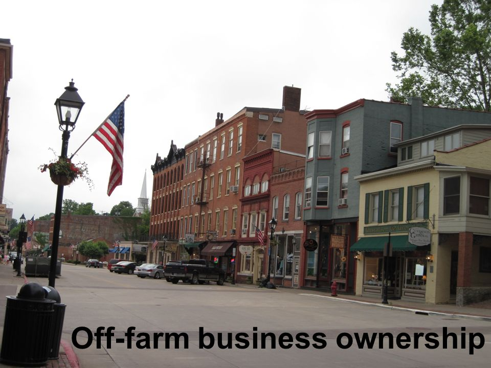 Off-farm business ownership