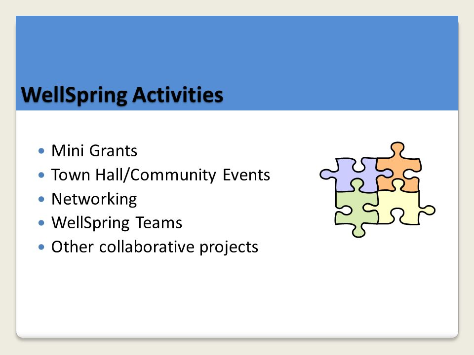 Mini Grants Town Hall/Community Events Networking WellSpring Teams Other collaborative projects WellSpring Activities