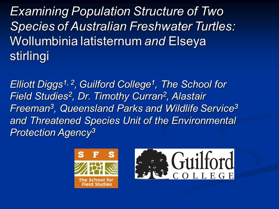 Examining Population Structure of Two Species of Australian Freshwater Turtles: Wollumbinia latisternum and Elseya stirlingi Elliott Diggs 1, 2, Guilford College 1, The School for Field Studies 2, Dr.