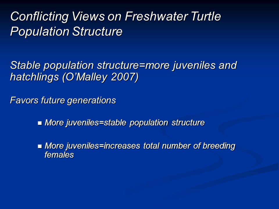 Conflicting Views on Freshwater Turtle Population Structure Stable population structure=more juveniles and hatchlings (OMalley 2007) Favors future generations More juveniles=stable population structure More juveniles=stable population structure More juveniles=increases total number of breeding females More juveniles=increases total number of breeding females