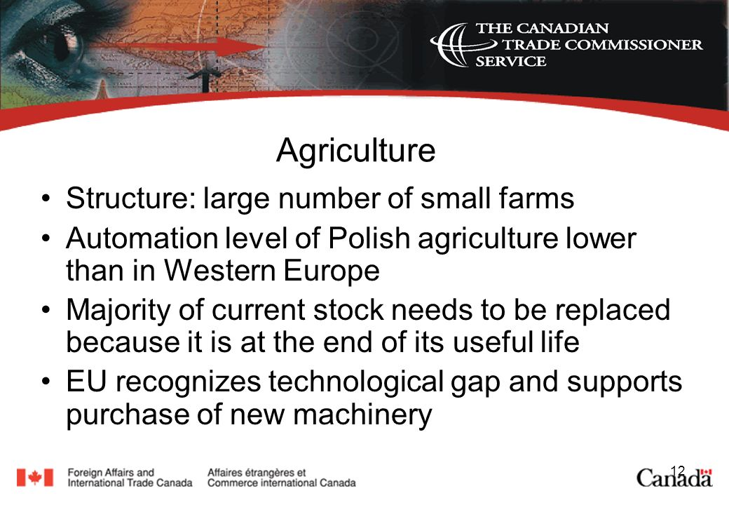 12 Agriculture Structure: large number of small farms Automation level of Polish agriculture lower than in Western Europe Majority of current stock needs to be replaced because it is at the end of its useful life EU recognizes technological gap and supports purchase of new machinery