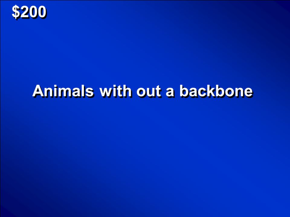 © Mark E. Damon - All Rights Reserved $100 What are animals with a backbone Scores