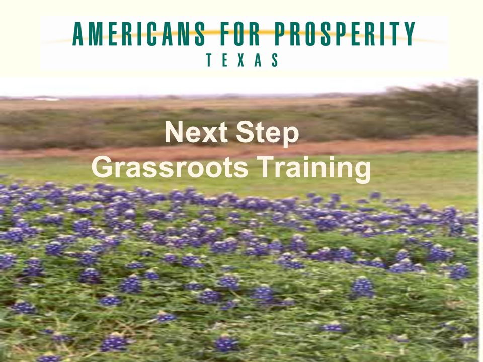 Next Step Grassroots Training