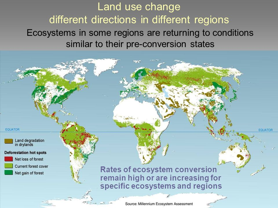 Land use change different directions in different regions Rates of ecosystem conversion remain high or are increasing for specific ecosystems and regions Ecosystems in some regions are returning to conditions similar to their pre-conversion states