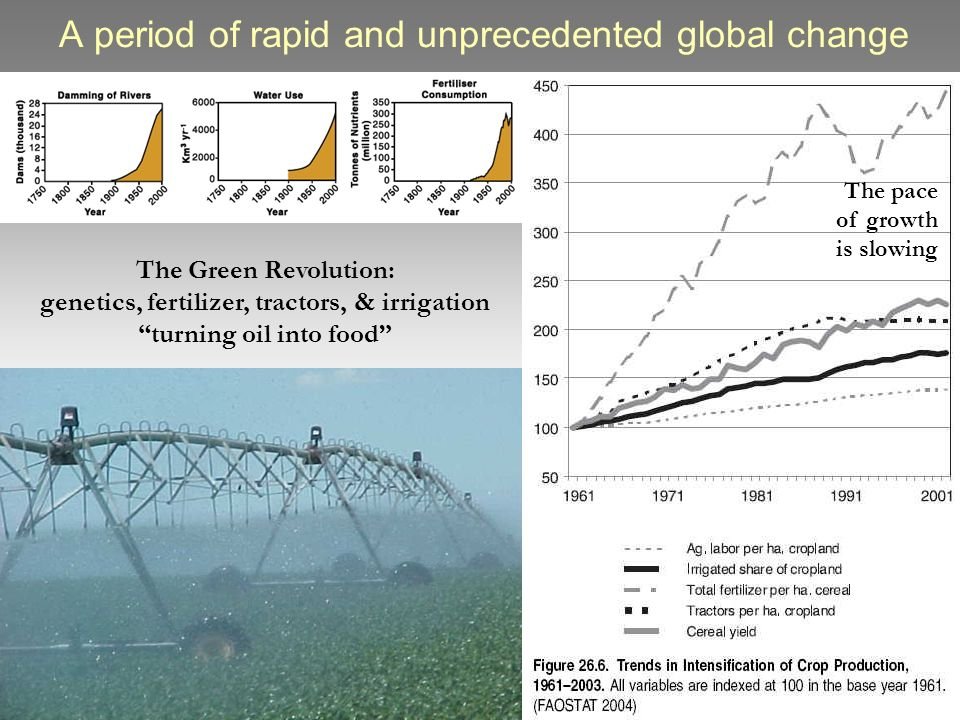 A period of rapid and unprecedented global change The Green Revolution: genetics, fertilizer, tractors, & irrigation turning oil into food The pace of growth is slowing