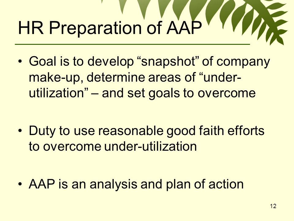 12 HR Preparation of AAP Goal is to develop snapshot of company make-up, determine areas of under- utilization – and set goals to overcome Duty to use reasonable good faith efforts to overcome under-utilization AAP is an analysis and plan of action
