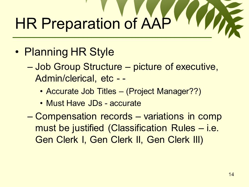 14 HR Preparation of AAP Planning HR Style –Job Group Structure – picture of executive, Admin/clerical, etc - - Accurate Job Titles – (Project Manager ) Must Have JDs - accurate –Compensation records – variations in comp must be justified (Classification Rules – i.e.