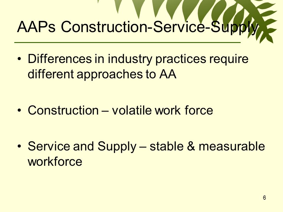 6 AAPs Construction-Service-Supply Differences in industry practices require different approaches to AA Construction – volatile work force Service and Supply – stable & measurable workforce