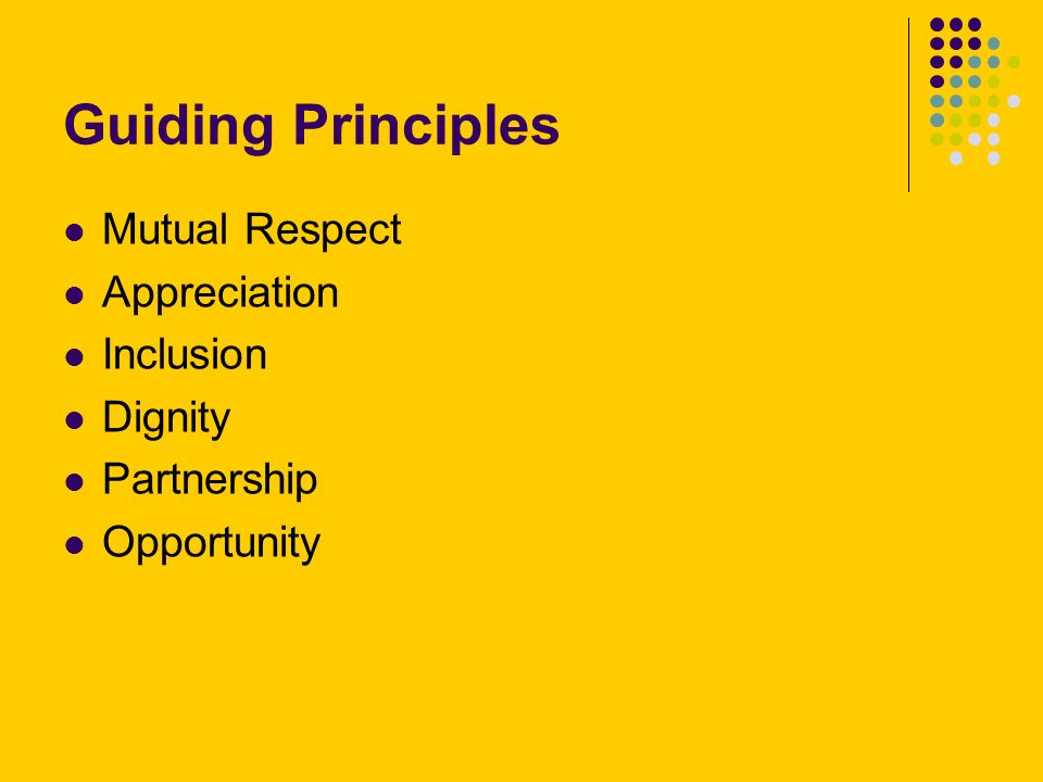 Guiding Principles Mutual Respect Appreciation Inclusion Dignity Partnership Opportunity