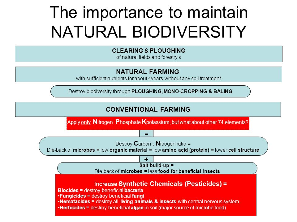 - + The importance to maintain NATURAL BIODIVERSITY CLEARING & PLOUGHING of natural fields and forestry s NATURAL FARMING with sufficient nutrients for about 4years without any soil treatment Apply only N itrogen P hosphate K potassium, but what about other 74 elements.