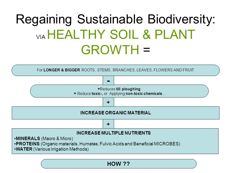 Regaining Sustainable Biodiversity: VIA HEALTHY SOIL & PLANT GROWTH = For LONGER & BIGGER ROOTS, STEMS, BRANCHES, LEAVES, FLOWERS AND FRUIT INCREASE ORGANIC MATERIAL + INCREASE MULTIPLE NUTRIENTS MINERALS (Macro & Micro) PROTEINS (Organic materials, Humates, Fulvic Acids and Beneficial MICROBES) WATER (Various Irrigation Methods) =Reduces till ploughing = Reduce toxic-, or Applying non-toxic chemicals, HOW .