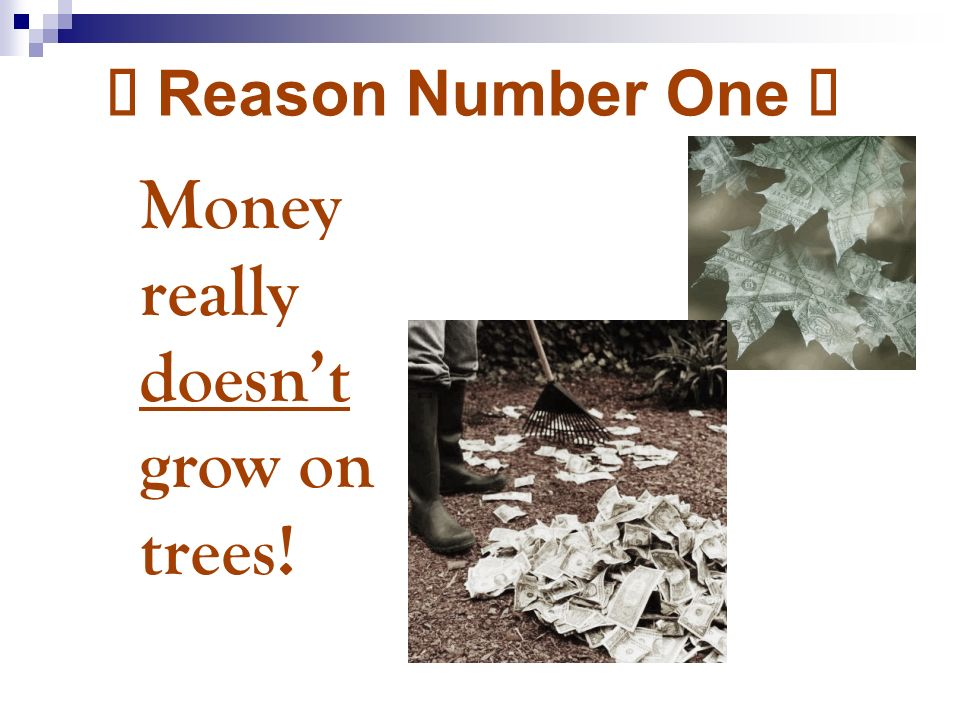 Ø Reason Number One Ø Money really doesnt grow on trees!