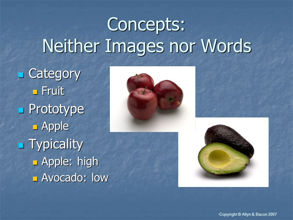 Copyright © Allyn & Bacon 2007 Concepts: Neither Images nor Words Category Category Fruit Fruit Prototype Prototype Apple Apple Typicality Typicality Apple: high Apple: high Avocado: low Avocado: low