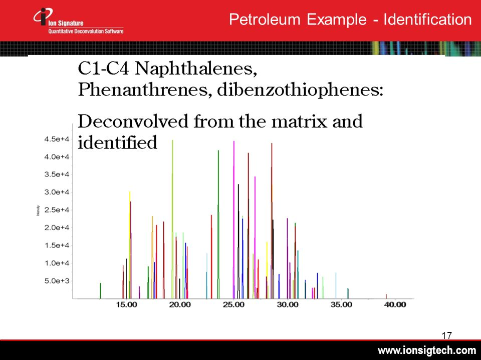 17 Petroleum Example - Identification