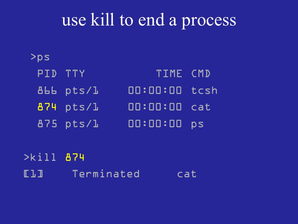 use kill to end a process >ps PID TTY TIME CMD 866 pts/1 00:00:00 tcsh 874 pts/1 00:00:00 cat 875 pts/1 00:00:00 ps >kill 874 [1] Terminated cat