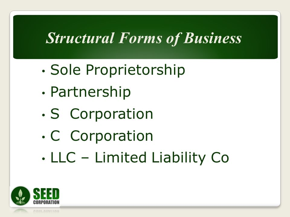 Sole Proprietorship Partnership S Corporation C Corporation LLC – Limited Liability Co Structural Forms of Business