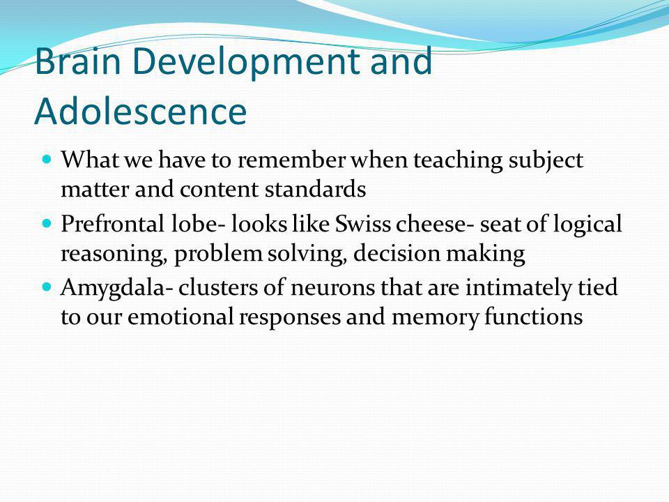 Brain Development and Adolescence What we have to remember when teaching subject matter and content standards Prefrontal lobe- looks like Swiss cheese- seat of logical reasoning, problem solving, decision making Amygdala- clusters of neurons that are intimately tied to our emotional responses and memory functions