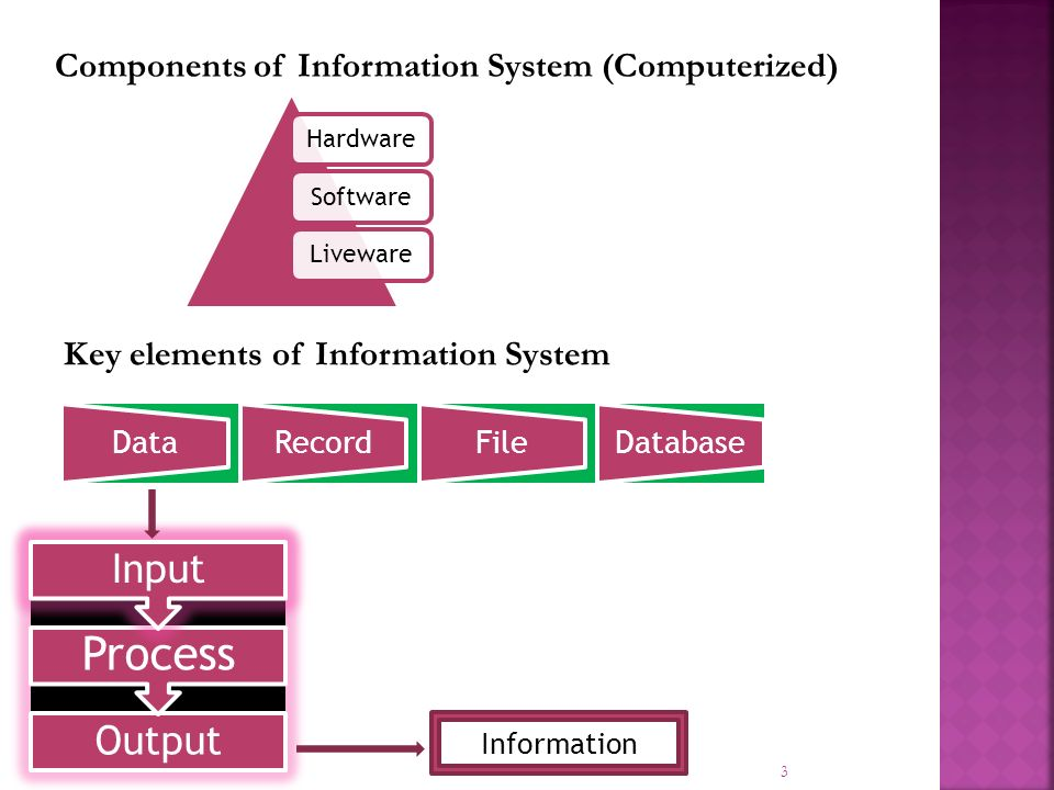 3 HardwareSoftwareLiveware Components of Information System (Computerized) Key elements of Information System DataRecordFileDatabase Information