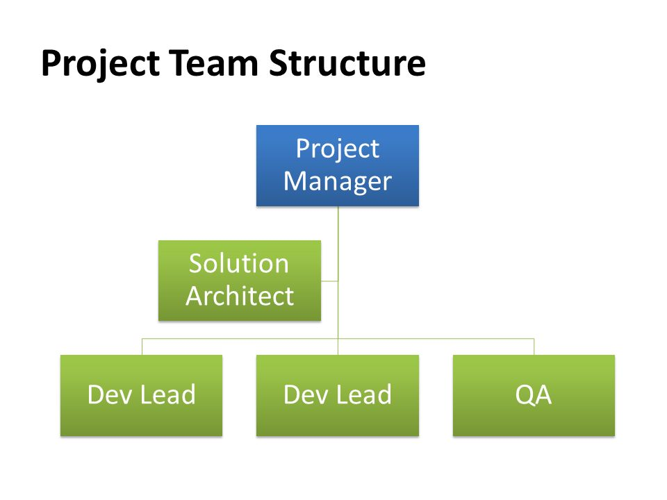 Project Team Structure Project Manager Dev Lead QA Solution Architect