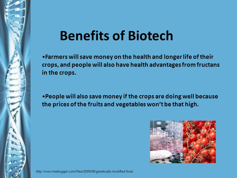 Benefits of Biotech Farmers will save money on the health and longer life of their crops, and people will also have health advantages from fructans in the crops.
