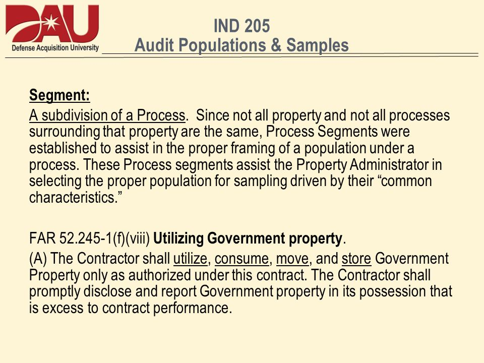 IND 205 Audit Populations & Samples Segment: A subdivision of a Process.