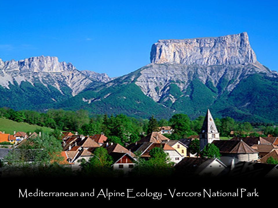 Mediterranean and Alpine Ecology - Vercors National Park