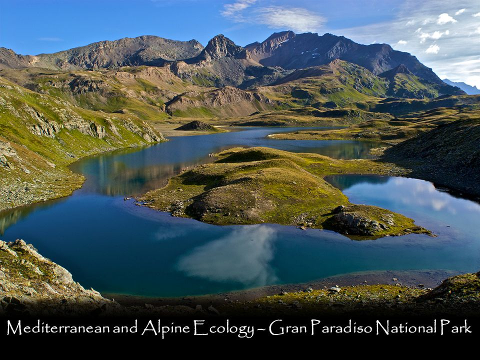 Mediterranean and Alpine Ecology – Gran Paradiso National Park
