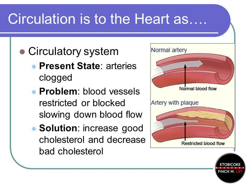 Circulation is to the Heart as….